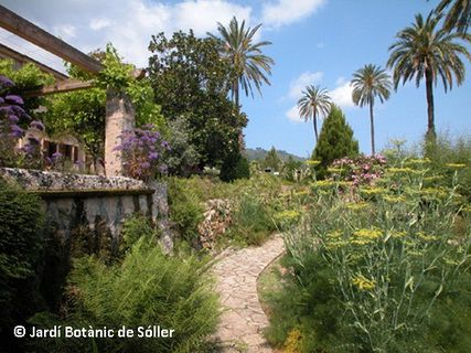 A unique Botanical Garden in the Illes Balears