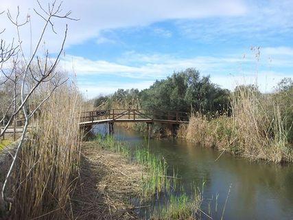 Parc Naturel de S'Albufera de Mallorca