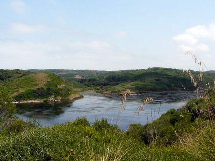 Das Naturschutzgebiet S'Albufera des Grau