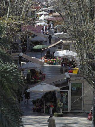 Ramblas de Palma de Mallorca