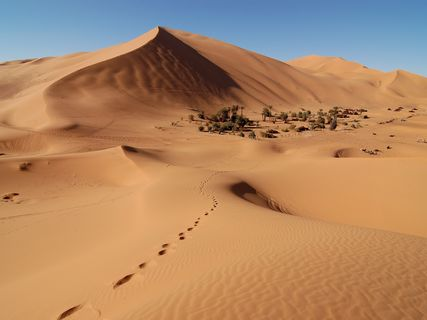 Exposición: Sáhara, un pueblo sin tierra