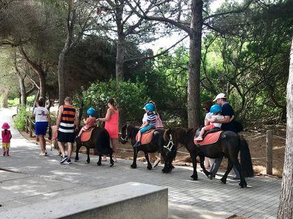 Pony World Menorca