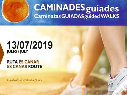 Caminata guiada gratuita para conocer Es Canar