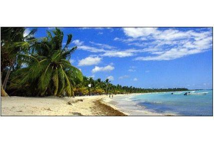 Essential Saona Island