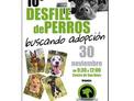 10* Desfile De Perros Buscando Adopción