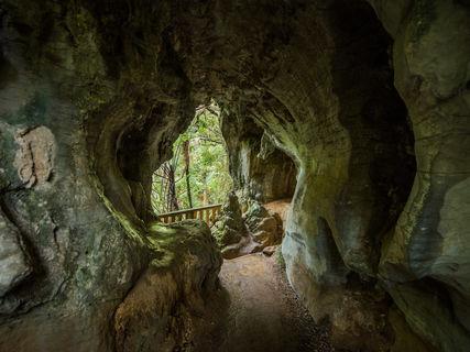 Ruakuri Natural Tunnel