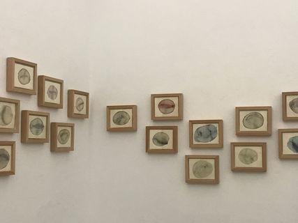 Exposición de Joan Pascual Roca