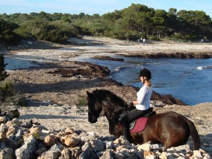 Rutas ecuestres Cami de Cavalls