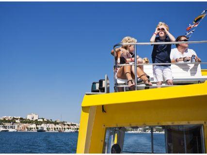 Yellow Catamarans