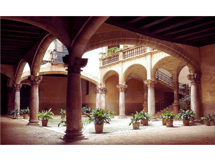 Guided visit to the Patios de Palma