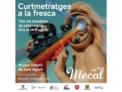 Mecal Air Ibiza vuelve este verano a San Agustín