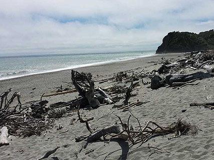 Waita Beach