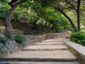 The Romieu garden