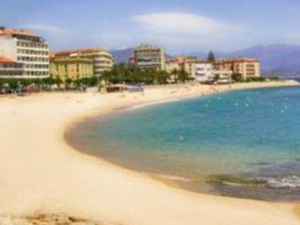 Playa Trottel