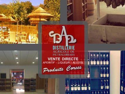 La distillerie de Pietracorbara