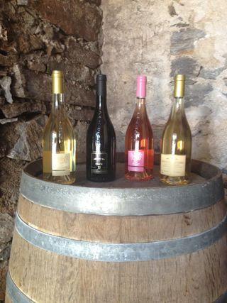 Dégustation des vins du Clos De Bernardi