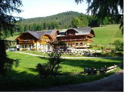 Bio-Bauernhof Greimelbacherhof
