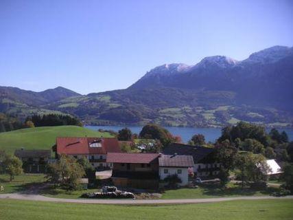 Ferienhof Grubinger