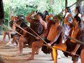 Mitai Maori Cultural Experience