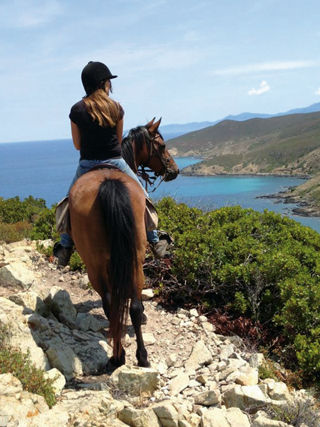 Arbo Valley Horse Farm