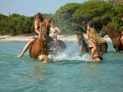 Horseback riding &swimming