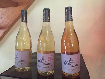 Wine of the Domaine Giudicelli