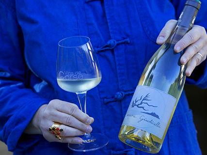 Wine tasting at the Domaine Giudicelli
