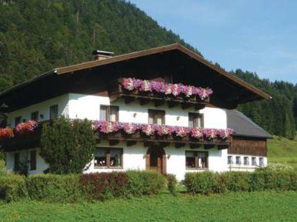 Apartment Unterberg Abtenau II