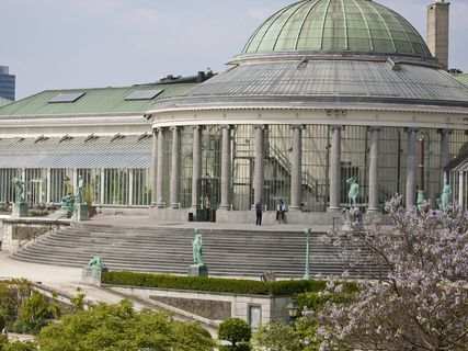 Botanical Garden of Brussels