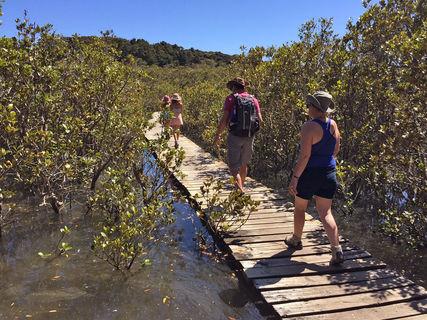 Waitangi to Haruru Falls Walk