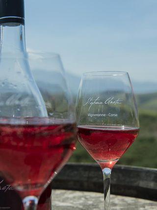 Wine tasting of Domaine Stephanie Olmeta