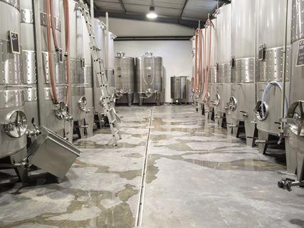 Dégustation des vins du Domaine Yves Leccia