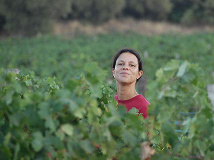 Wein des Domaine Granajolo