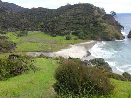 Pandora Bay Campsite