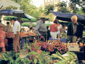 Mercado Semanal Alcudia