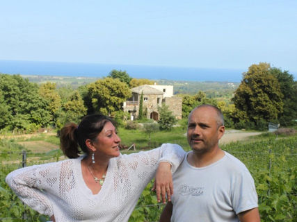 Wines of the Domaine Vecchio