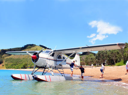 Auckland Seaplanes