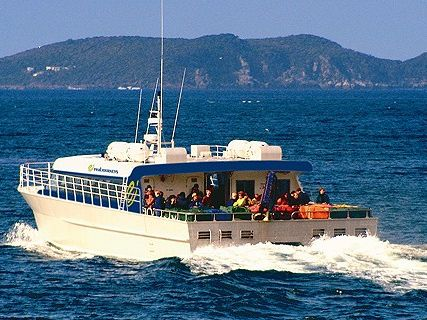Stewart Island - Real Journeys