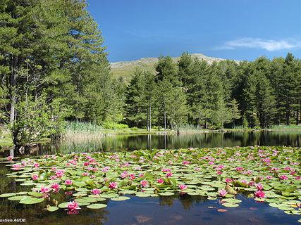 Creno (Crenu) lake