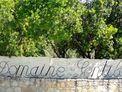 Domaine Gentile wine