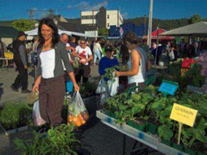 Growers Market