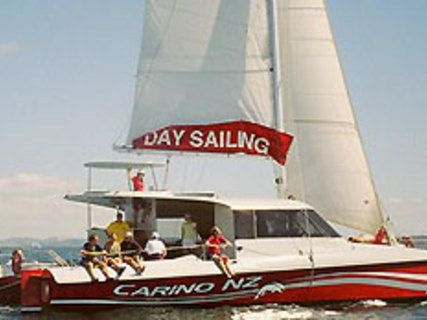 Carino Sailing & Dolphin Adventures