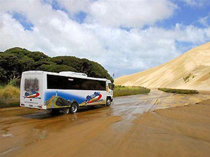 Explore - Dune Rider Cape Reinga