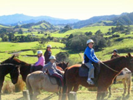 Colville Farm Horse Treks
