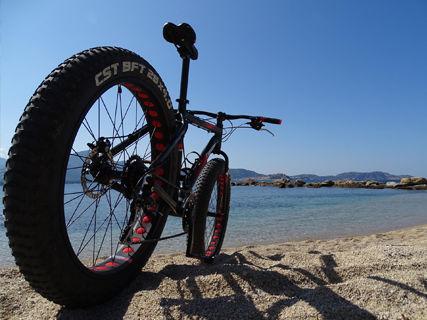 Fat Bike dans les vignes (Balacorsica)
