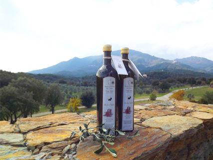 Huile d'olive du Domaine de Teghja, vin & miel