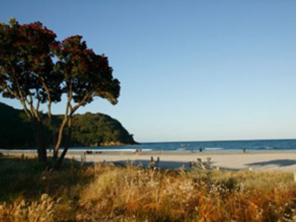 Waihi Beach Top 10 Holiday Park