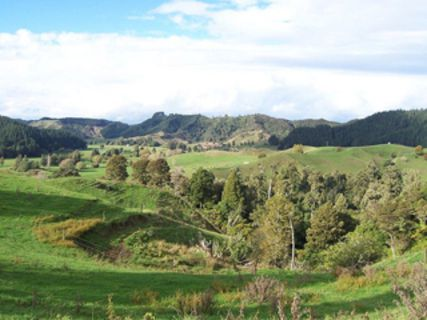 The Waitomo Walkway