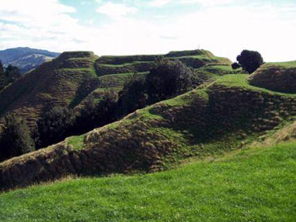 Papamoa Hills Regional Park