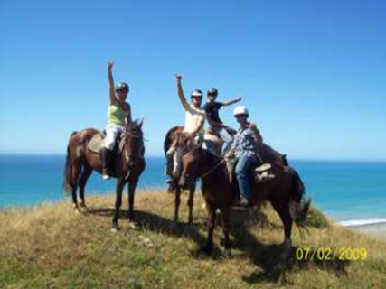 Eastender Backpackers & Horse Treks